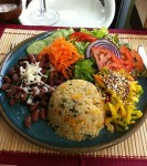 Comida Organica en Costa Rica