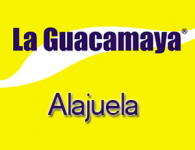 Guacamaya en Alajuela