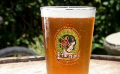 Picture of Costa Rican Craft Beer