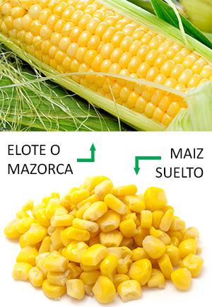 Foto que ilustra la diferencia entre el elote la mazorca y el maiz