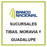 BNCR Sucursales Tibas Moravia y Guadalupe
